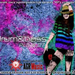 VA - Drum and Bass Pro V.27 (2013) MP3