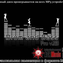 VA - Drum and Bass Pro V.23 (2013) MP3
